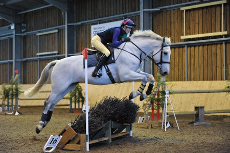 Indoor Equestrian Photography