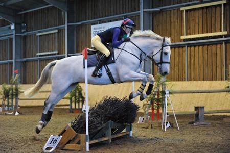 Indoor Equestrian Photography