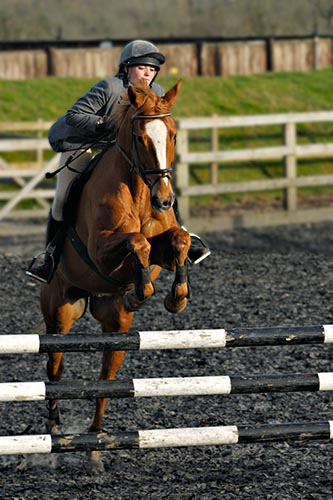 Show Jumping Equestrian Photography including dressage and cross country