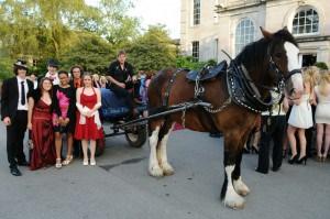 Horse Drawn Arrival at Thomas Hardye Prom 2011