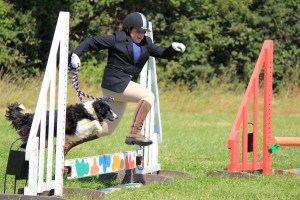 Horse & Hounds Competition