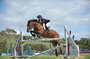Godlingston Manor Horse Show at Swanage Dorset
