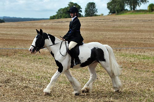 Ridden Showing - White Horse Equestrian Centre