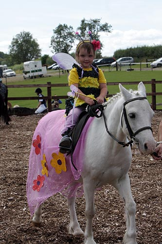 Showing in Hand - Equestrian Fancy Dress