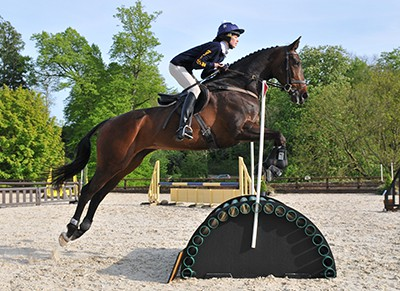 Professional Equestrian Photography Dorset