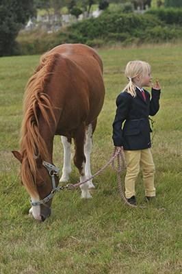Equestrian Photography Dorset