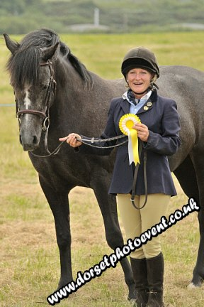 Equestrian Photography In Hand Showing Godlingston Manor