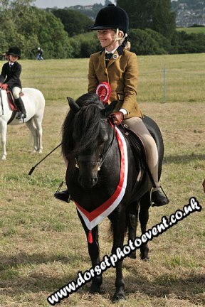 Dorset Equestrian Photography Ridden Showing
