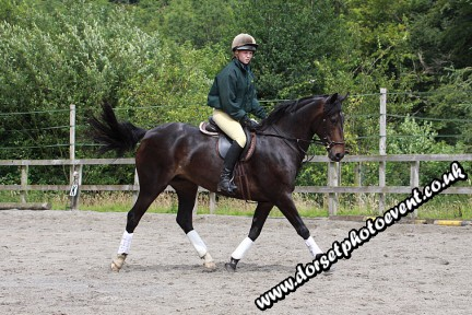 Dressage Photography Dorset
