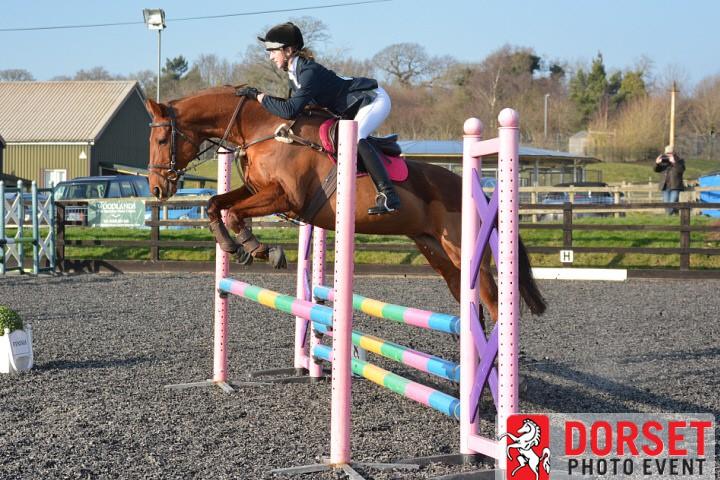 Dorset Equestrian Photographer