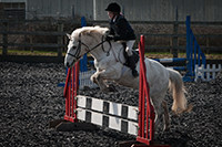 pony club photography