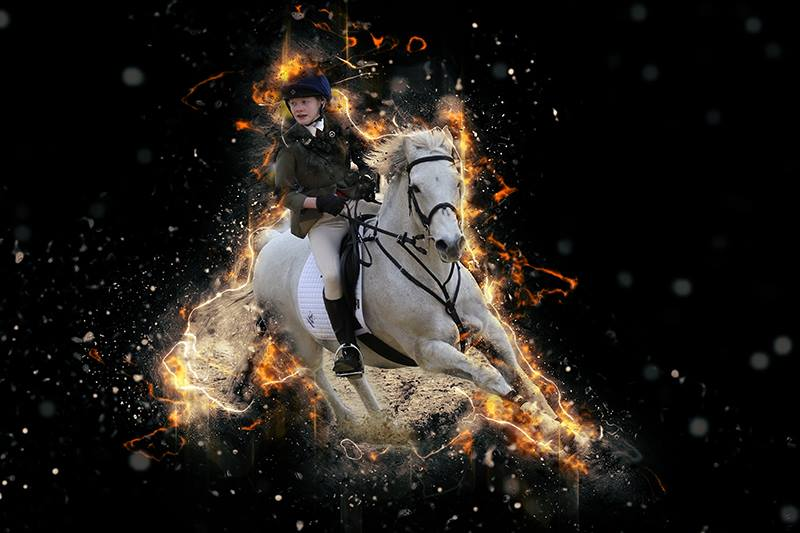 Equestrian Photography Special Edit
